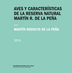Martin de la Peña